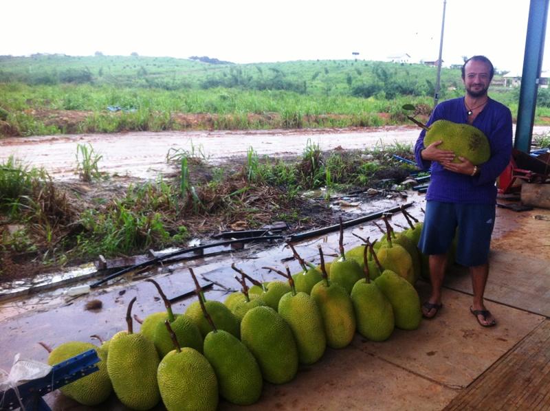 Jackfruit ve ben (sağdaki benim)