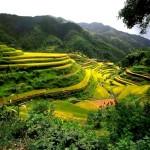 Yeşil Kalinga ve Baguio / Filipinler