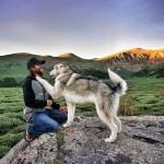 Kurt Köpeği İle Seyahat Eden Adam